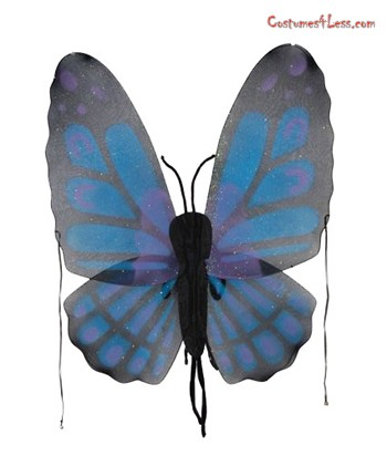 Adult Butterfly Wings