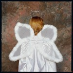 Wings Angel Marabou Costume
